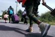 Еда для беженцев и отношение к ним в Канаде лучше, чем в США