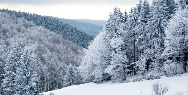 Квебек ждет длинная и холодная зима