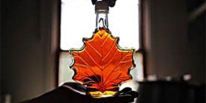 «Липкое дело». Стартует новый виток судебных разбирательств по самой крупной афере в истории Канады