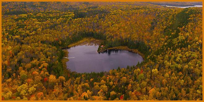 Поймать самый красивый сезон: карта осенней листвы Квебека